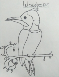 A-Rusaanth-Artwork-4-Woodpecker-Drawing