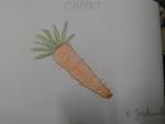 R-Jashwanth-Art-Work-20-carrot