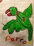 Srivishnu-Artwork-9-Parrot