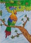 Satvik-Sriram-Artwork-2-Bird