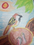 v-monika-art-work-1-bird-and-babies-drawing