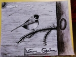 Varun-Gopalan-Artwork-1-Bird-Drawing