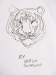 Varun-Gopalan-Artwork-7-Tiger-Drawing