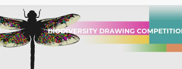 FIIN Biodiversity Drawing Contest 2018