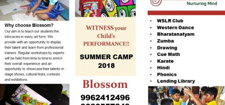 Summer Camp from Blossom….