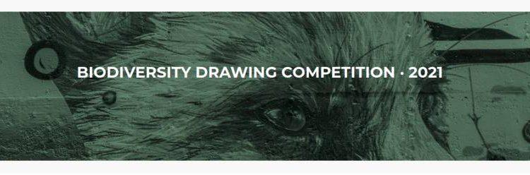 International Biodiversity Drawing Contest 2021