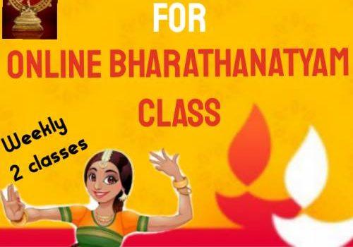 Shree Abinaya Natya Palli Online Bharathanatyam Classes